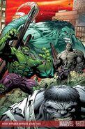 Hulk Broken Worlds Vol 1 2 Textless