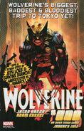 Wolverine Vol 2 300 Promo 0001