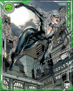 Felicia Hardy (Earth-616) from Marvel War of Heroes 006