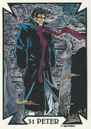 Peter Parker (Earth-616) from Todd Macfarlane (Trading Cards) 0006