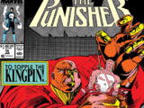 Punisher Vol 2 15