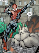 Peter Parker (Earth-58163) from Spider-Man House of M Vol 1 3 0002