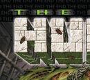 Incredible Hulk: The End Vol 1 1