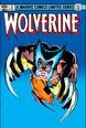 Wolverine Vol 1 2.jpg