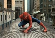 Peter Parker (Earth-96283) from Spider-Man 2 (film) 0002