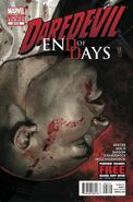 Daredevil End of Days Vol 1 2