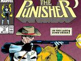 Punisher Vol 2 19