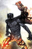 Black Panther Vol 6 1 Coipel Variant Textless