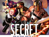 Secret Warriors Vol 1 8