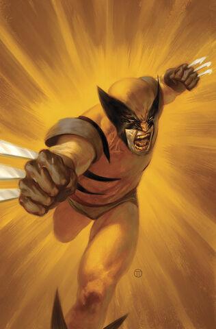 File:Wolverine Season One Vol 1 1 Textless.jpg