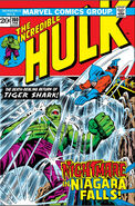 Incredible Hulk Vol 1 160