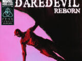 Daredevil: Reborn Vol 1 3