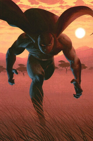 File:Black Panther Vol 4 1 Limited Edition Variant Textless.jpg