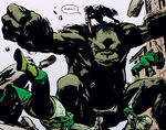 Bruce Banner (Earth-9997) from Earth X Vol 1 4 001