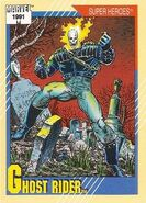 Daniel Ketch (Earth-616) from Marvel Universe Cards Series II 0001