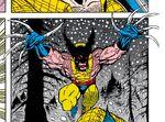 Wolverine (Doppleganger) (Earth-616) Infinity War Vol 1 1