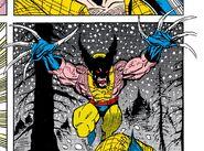 Wolverine (Doppelganger) (Earth-616)