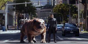 Marvel's Inhumans Season 1 1 001