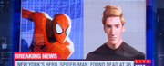 Peter Parker (Earth-TRN700) from Spider-Man Into The Spider-Verse 002