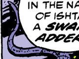 Swamp Adders/Gallery