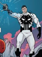 Frank Castle (Earth-616) from Amazing Spider-Man Full Circle Vol 1 1 001