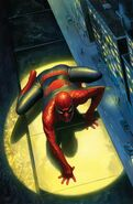 Peter Parker The Spectacular Spider-Man Vol 1 300 Ross Variant Textless