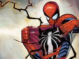 Spiderman Web Origins