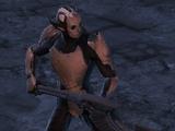 Dark Elf Soldier