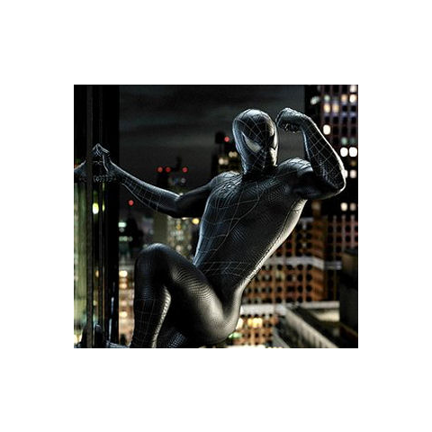 The black Spider-Man suit while wearing the Venom symbiote.