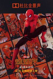 FFH Dolby Poster