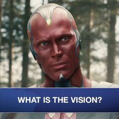 The Vision. Human? Alien? Something else? Does it matter? #WHIH investigates