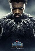Black Panther Character Posters 04