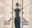 Wasp suit