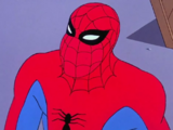 Peter Parker (Into the Spider-Verse Earth-67)