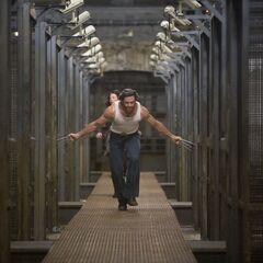 Logan frees the captive mutants