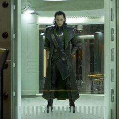Loki in Cage.