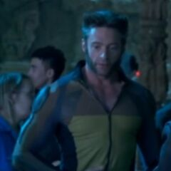 Wolverine's costume without the armor chest piece