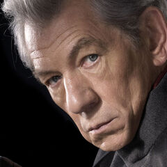 Magneto as he appears in <i>X-Men: The Last Stand</i> (2006).