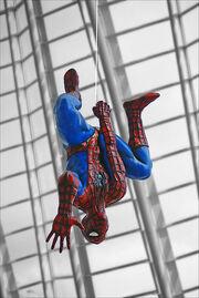 Spider pete parkwer