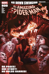 Spider-Man (Peter Parker) Halloween Cover