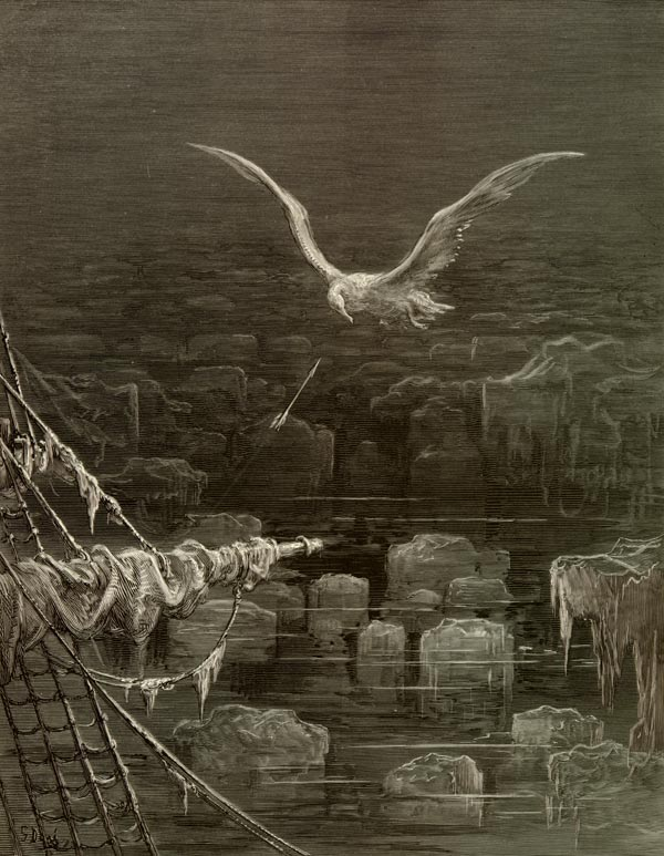 the rime of the ancient mariner mary shelley wiki fandom  albatross
