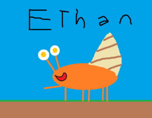 Ethan Picture