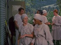 Red head nurse-the consultant