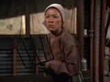Mrs. Li (Oksun Li's mother)