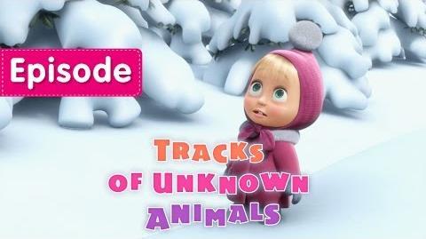 04. Tracks of Unknown Animals
