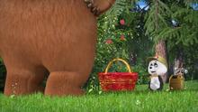 66 Панда и Медведица