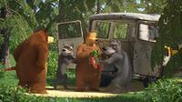 55 Медведь, Медведица и Волки