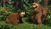 13 Медведь и Медведица