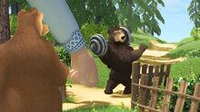 30 Гималайский медведь