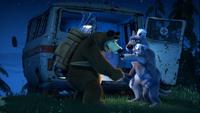 66 Медведь и Волки 2